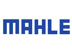 LOGOS-TECNOPREVEN_0042_mahle